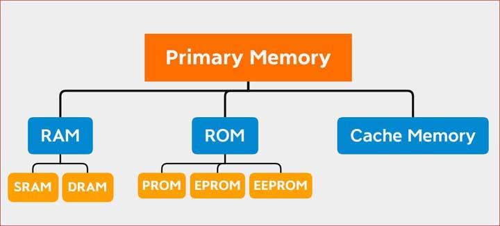 Primary Memory Examples
