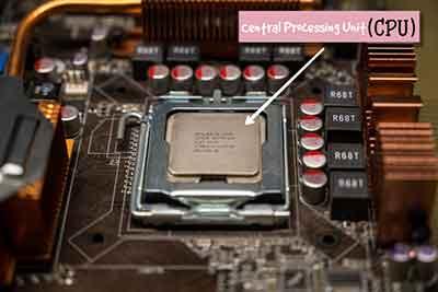 CPU or Processor