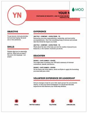 Polished Resume Example