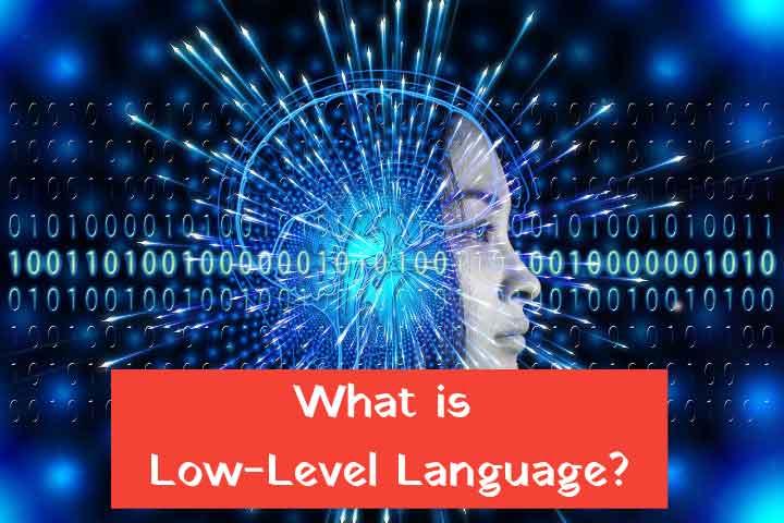 Low level language in hindi